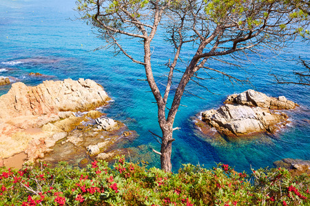 costa brava: Costa Brava beach Lloret de Mar in Catalonia at Spain Stock Photo
