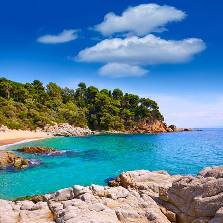 sa: Cala Sa Boadella platja beach in Lloret de Mar of Costa Brava at Catalonia Spain