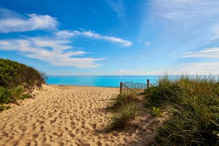 coastlines: Cape Cod Herring Cove Beach in Massachusetts USA