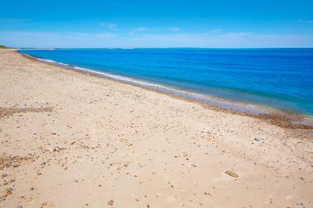Cape Cod Sandy Neck Beach in Barnstable Massachusetts USA