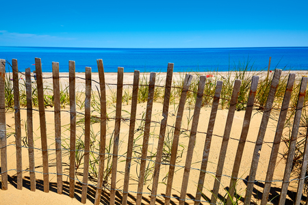 sandy beach: Cape Cod Sandy Neck Beach in Barnstable Massachusetts USA
