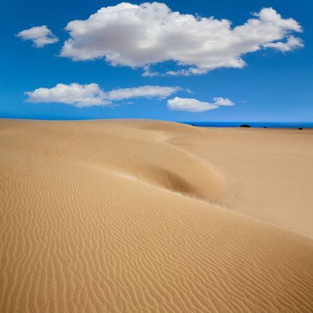 islas: Corralejo dunes Fuerteventura desert at Canary Islands of Spain