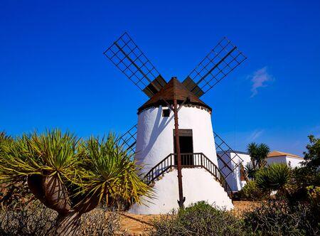 antigua: Antigua Windmill in Fuerteventura at Canary Islands of Spain