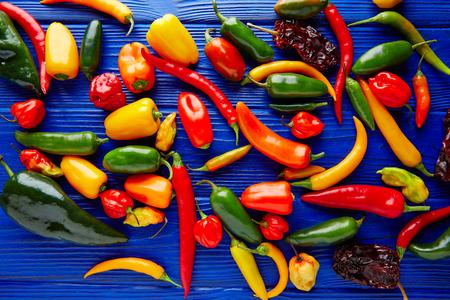 habanero: Mexican hot chili peppers colorful mix habanero poblano serrano jalapeno sweet