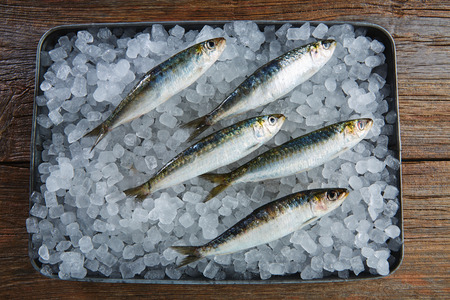sardines: Sardines fresh fishes on ice tray and wooden table Stock Photo