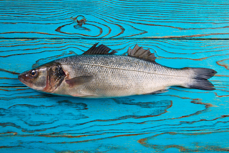 sea fishing: Seabass fresh fish on wooden aqua table Stock Photo