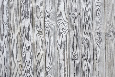 white chalk: Chalk painted White pine wood texture background