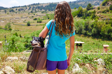 small girl: Girl with dog in a bag rear view looking at mountains landscape outdoor