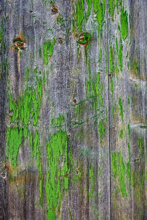 painted wood: Aged  gray wood green painted detail texture