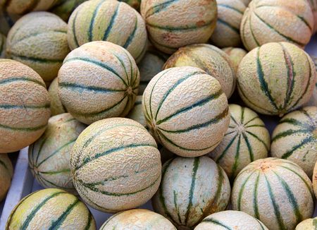 melons: Cantaloupe melons at the marketplace stacked Stock Photo