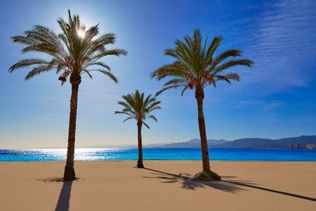 Cullera Playa los Olivos beach in Mediterranean Valencia at Spain