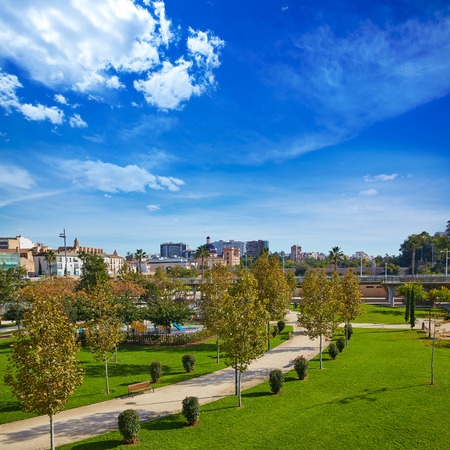 community garden: Valencia Turia river park gardens and skyline in Spain