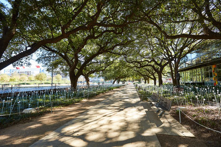 green park: Houston Discovery green park in downtown Texas Stock Photo