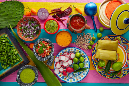 ethnic mix: Mexican food mix with sauces nopal and tamale agave guacamole Stock Photo