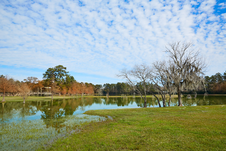 boroughs: Tomball Burroughs park in Houston Texas with mossy oaks Stock Photo
