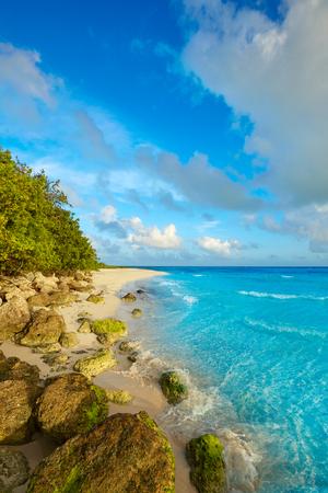 key of paradise: Florida Keys beach Bahia Honda State Park in USA