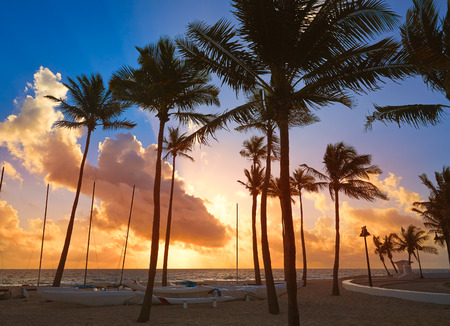 Fort Lauderdale strand ochtend zonsopgang in Florida USA palmen Stockfoto