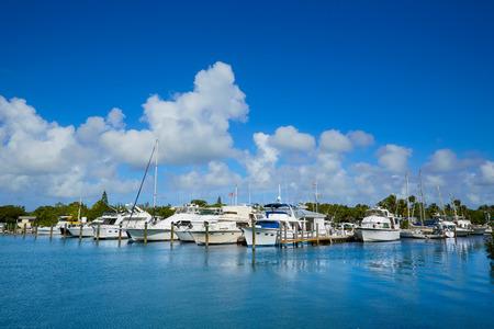 key west: Key West Florida marina in Garrison Bight of Florida USA Stock Photo