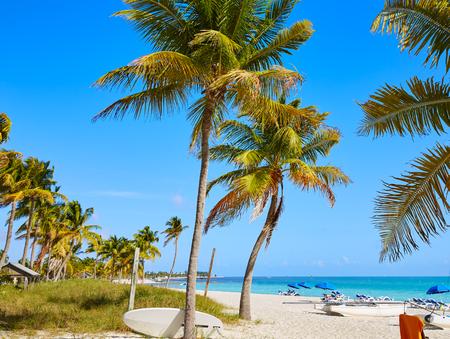 Key West Florida Smathers Strand Palmen in USA Standard-Bild