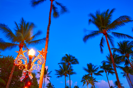 sunset palm trees: Miami Beach South Beach sunset palm trees in Ocean Drive Florida Stock Photo