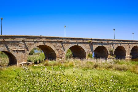 merida: Merida in Spain roman bridge over Guadiana river Badajoz Extremadura