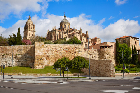 castilla: Salamanca Cathedral facade in Spain by the Via de la Plata way to Santiago