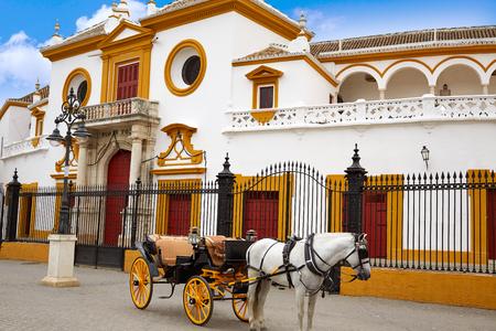 corrida de toros: Sevilla Real Maestranza toros de plaza de Sevilla en Andalucía, España