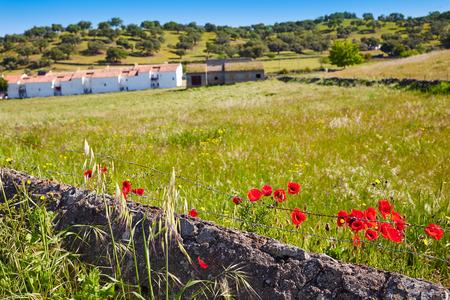 Real del Jara by Via de la Plata way in Spain at Andalusia