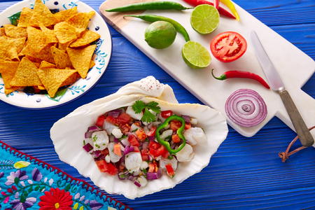 Ceviche Mexican food style recipe with nachos and ingredients Stock Photo - 74799654