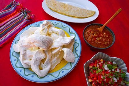 gallo: Oaxaca cheese quesadilla from Mexico on red background