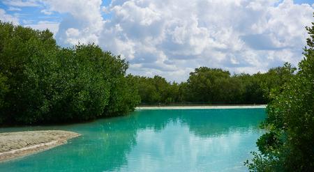 yucatan: Holbox tropical Island lagoon in Quintana Roo of Mexico