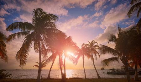 Isla Mujeres island Caribbean beach sunset palm trees Riviera Maya in Mexico Stock Photo