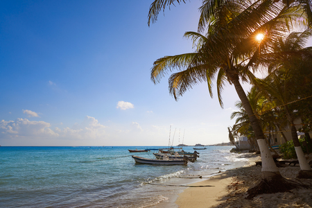 Playa del Carmen beach palm trees in Riviera Maya Caribbean of Mexico Stock Photo