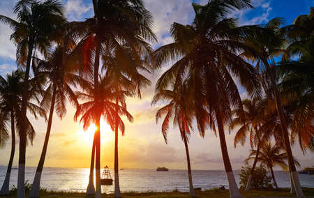 Isla Mujeres island Caribbean beach sunset palm trees Riviera Maya in Mexico Stock Photo