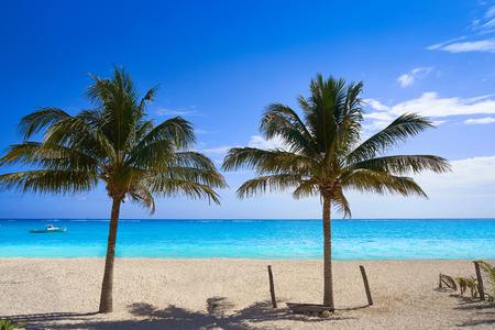 Caribbean beach coconut palm trees in Riviera Maya of Mexico Stock Photo