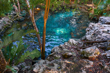 Cenote sinkhole in Riviera Maya at Mayan Mexico