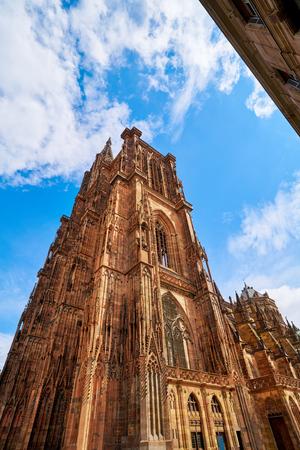 Notre Dame Cathedral in Strasbourg Alsace France Stok Fotoğraf