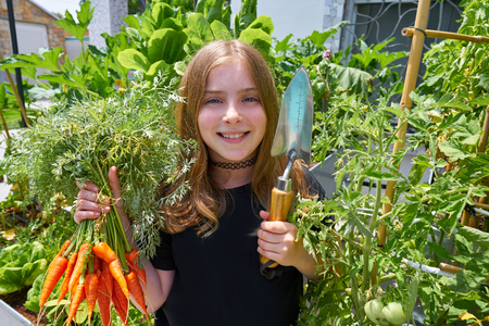 Blond girl harvesting carrots in urban orchard field