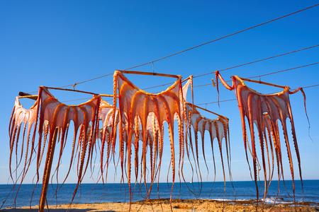 Poulpe séché à l'extérieur de l'Espagne méditerranéenne à sec Banque d'images