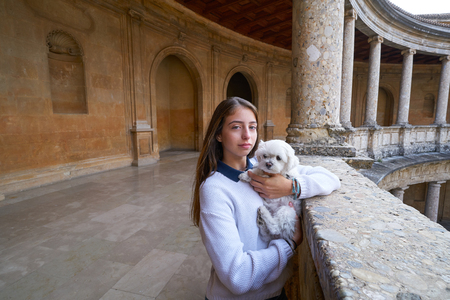 Tourist girl with pet doy in Alhambra of Granada in Spain Banque d'images - 115779474