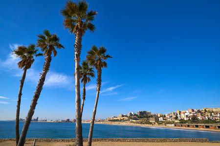 El Miracle beach palm trees in Tarragona at Costa Dorada of Catalonia