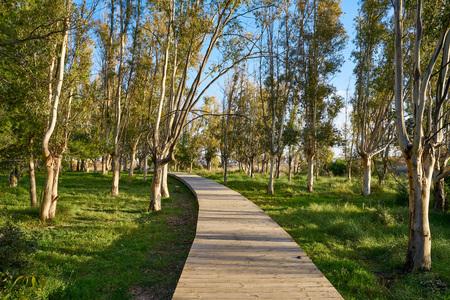 Torre la Sal track in Cabanes park Castellon of Spain