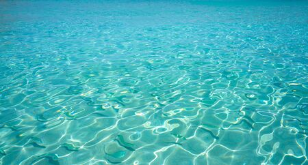 Ibiza Portinatx Arenal Petit beach clear water fishes in Balearic Islands