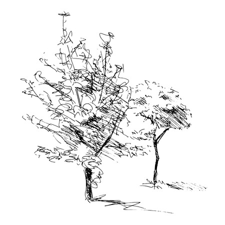 Sketch of two trees  Vector illustration
