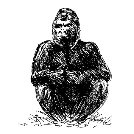 Drawing gorilla sitting  Vector illustration
