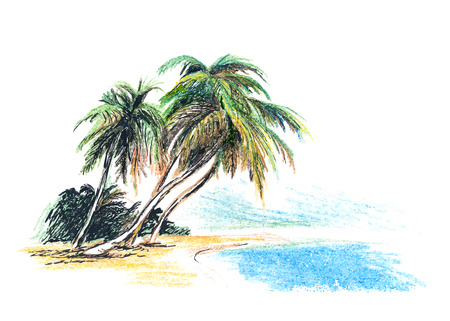 peaceful scene: Drawing beach with palm trees  Vector illustration