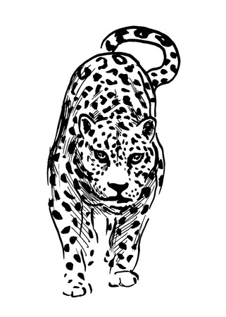 vulnerable: Hand drawing illustration