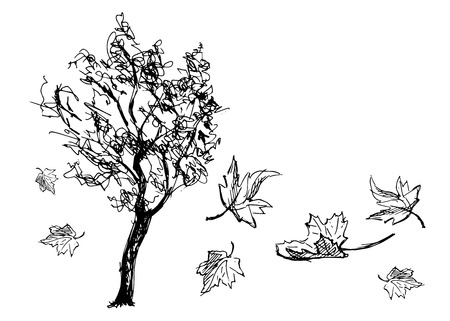 Sketch tree with falling leaves.
