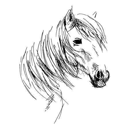 carreras de caballos: Mano cabeza de caballo dibujo Vectores