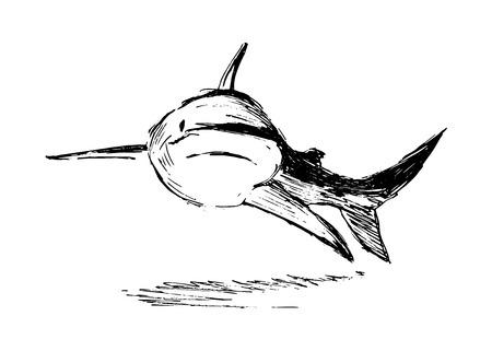 手スケッチ サメ  イラスト・ベクター素材